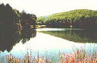 озеро возле лечебницы