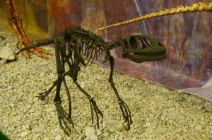 крымдинозавр